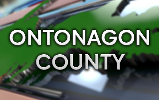 ontonagon county singles List of all zip codes for the state of michigan, mi includes all counties and cities in michigan.
