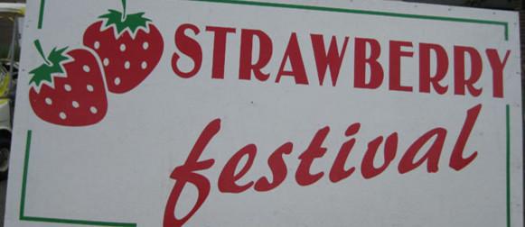 2014 Strawberry Festival