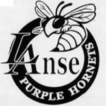L'Anse Purple Hornets Logo