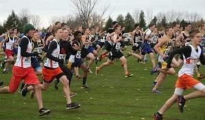 Runners begin the boys' U.P. Title Race - MHSAA Image